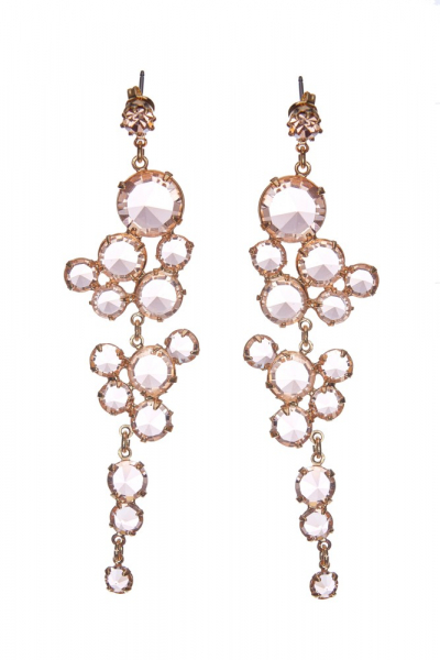Elegant earrings