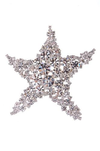 Brož - mořská hvězdice