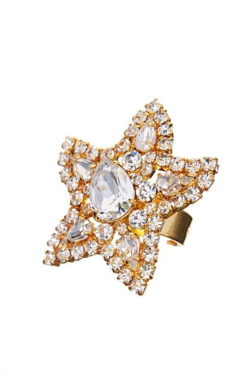 Prsten – mořská hvězda